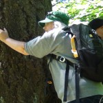 PORTLAND SETS RECORD FOR TREE HUGGING